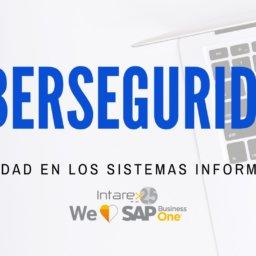 sistemas seguridad informática